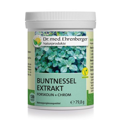 Buntnessel Dr. Ehrenberger